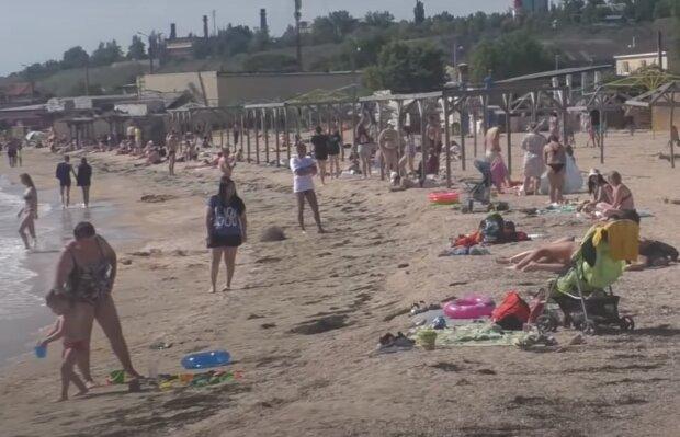 """Новая напасть разогнала отдыхающих на пляжах Запорожья - """"Отправит под капельницу!"""""""