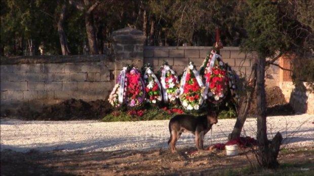 На могилі Януковича посадили сторожову собаку