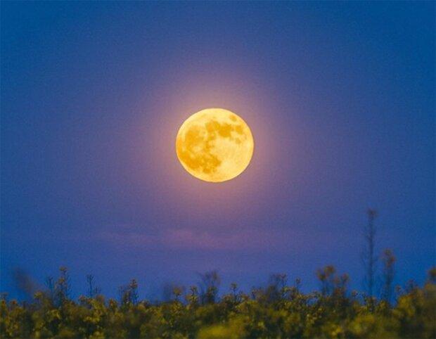 Луна, фото из instagram