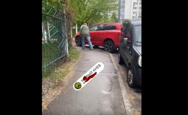 """Київському оленю парковки пояснили, що не так: """"Одного разу і до вас дістанеться"""""""