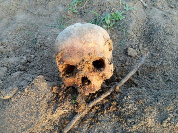В Одесі виявили рештки людських тіл: 20 років проходили повз і не помічали