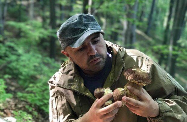 Усі за грибами: Карпати заполонили люди з кошиками, як шукати білоголових красенів