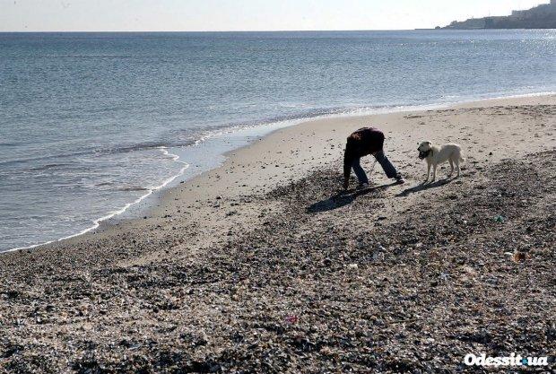 """Эффектные пейзажи: в Одессе """"отступило"""" море, обнажив красоту побережья"""