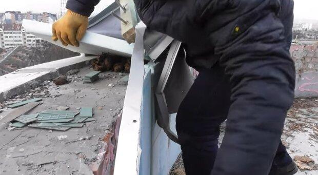 Во Франковске спасли колонию летучих мышей, кадр из видео: Facebook Владимир Бучко