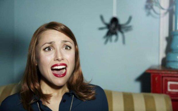 Непрохані гості: як прогнати павуків з дому