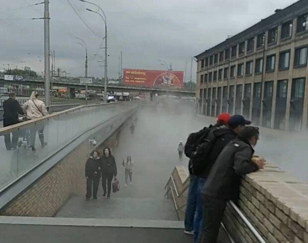 Фонтан из кипятка / скриншот из видео