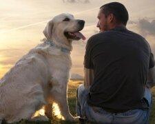 Хотите дольше жить  - заведите собаку