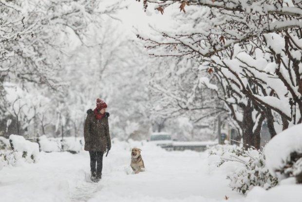 Сніговий апокаліпсис мчить до України: синоптики назвали дату