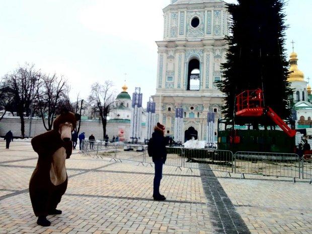 Софийскую площадь готовят к Новому году: елку собрали, на очереди - сияющий фонтан и 90-метровая горка