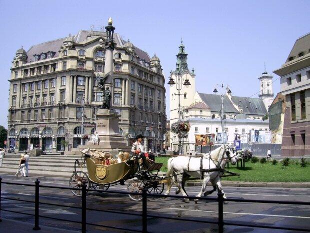 Жахливе місиво: у Львові перелякані коні знесли лавочку з людьми, постраждала дитина, - фото не для вразливих