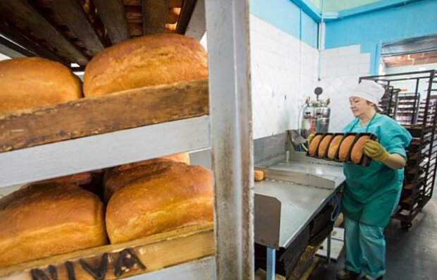 """Хлеб, фото: """"АиФ"""""""