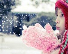 Первый снег в Харькове, фото: Город Х