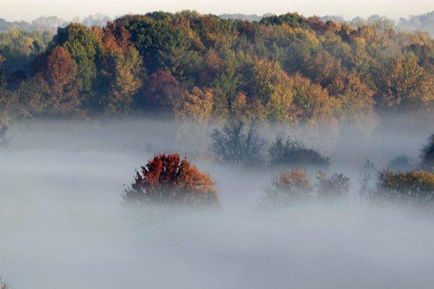 Погода на 22 жовтня: українцям доведеться пересуватися навпомацки