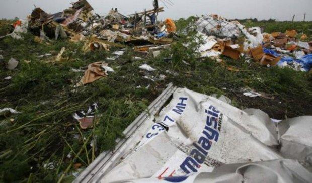 Нидерланды определили заказчиков катастрофы МН17