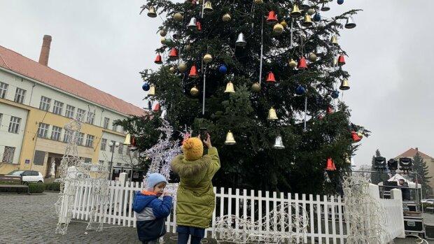 """В Ужгороді """"прокинулася"""" головна новорічна красуня, українці не натішаться: """"Прикраса Закарпаття"""""""