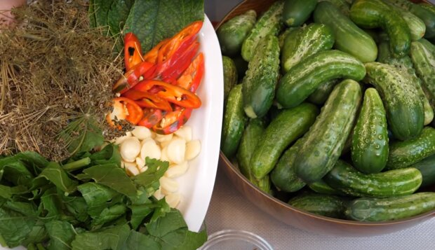 Хрусткі квашені огірочки на всю зиму – рецепт ароматного соління до свят