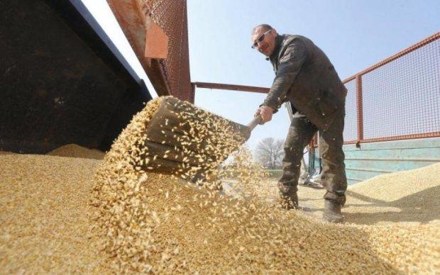 Всеукраїнську аграрну раду спіймали на крадіжці грошей аграріїв, які ті збирали на протести