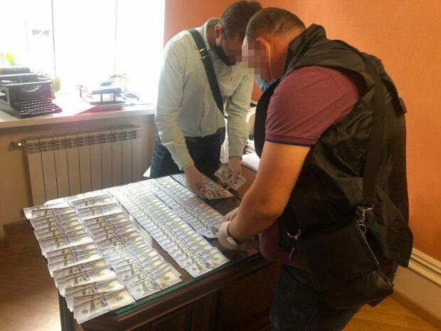 Львівських чиновників спіймали на мерзенній схемі із землею - продавали гектари під прикриттям мандатів