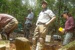 Дослідження джунглів, скріншот із відео