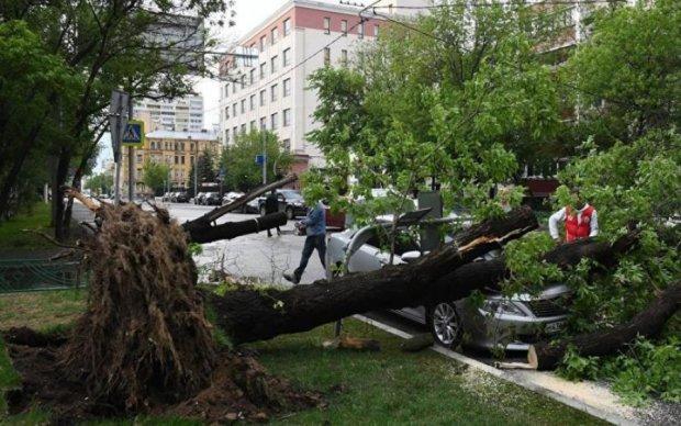 В Москві ураган знищив дівчинку: страшні кадри трагедії