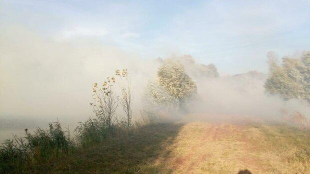 На Харківщині вітер приніс вогонь з Росії - з пекельним полум'ям боролися двічі