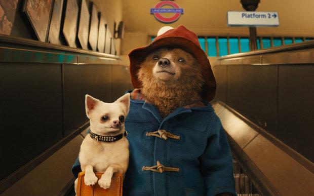 Паддінгтон повертається: ведмедик знімається в новому серіалі