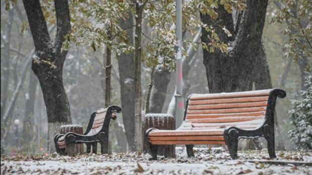 Зимо, ти де? Синоптики здивували запоріжців весняним прогнозом на 12 грудня