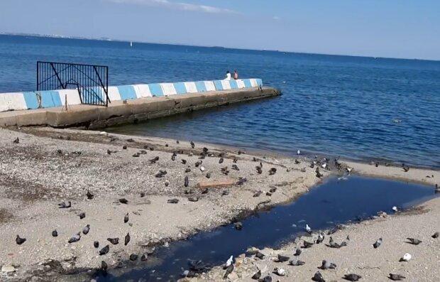 Крым, море, фото скриншот с видео