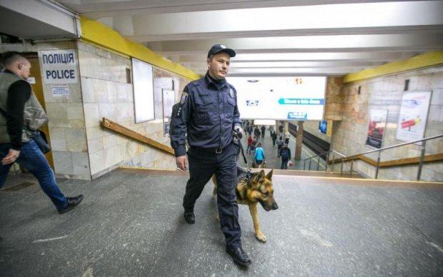 """Где-то мы вас видели: в Киеве задержали """"опасного преступника"""""""