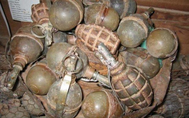 Полную сумку с гранатами нашли на Житомирщине