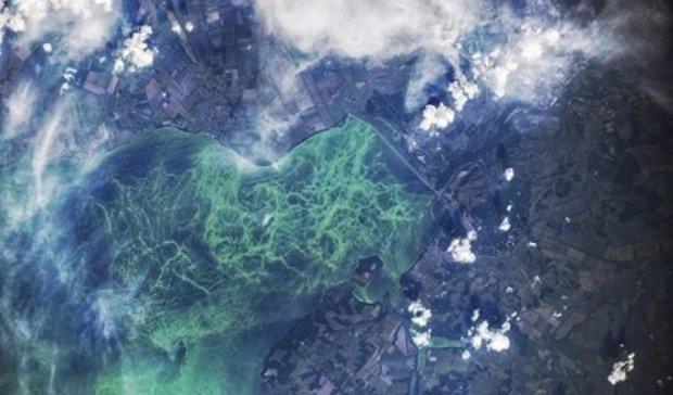 Вид с МКС: как цветет Кременчугское море