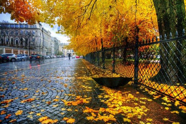 Прогноз погоди на 29 жовтня: на українців чекає тепло, але де