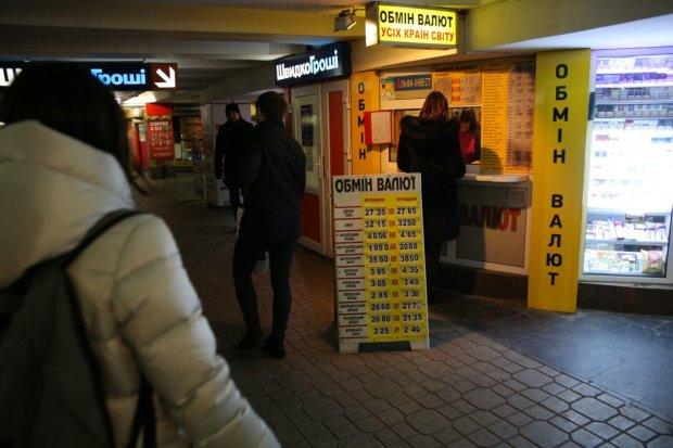 Курс валют на 30 березня: гривня жорстко помститься долару і євро