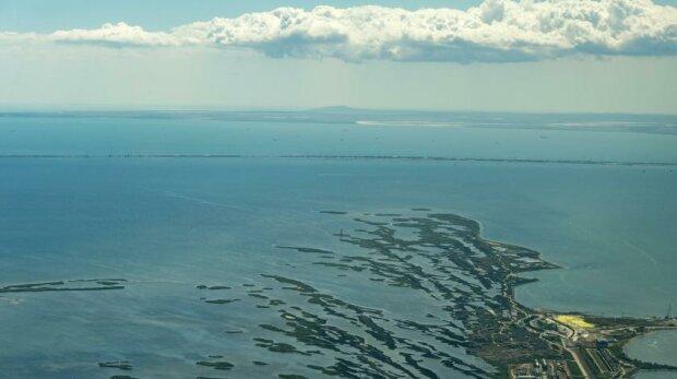 Чудовища терроризируют Азовское море: вода окрасилась в цвет смерти, отдыхающие в ужасе бегут с пляжей