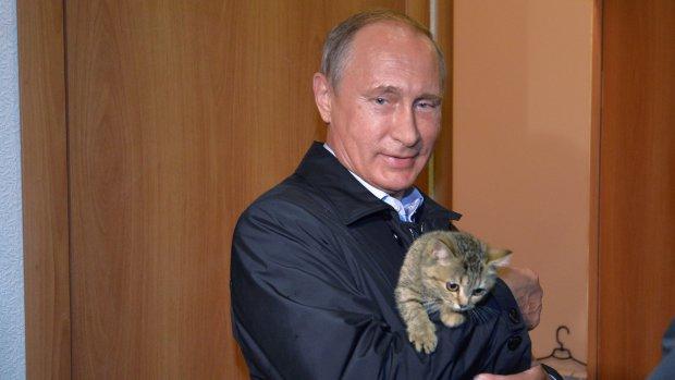 Путін з котеням, яке намагається від нього втекти