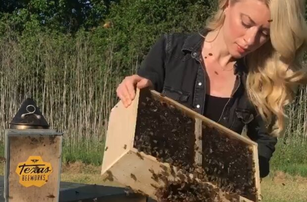 Пчеловодка Эрика Томпсон, instagram.com/texasbeeworks