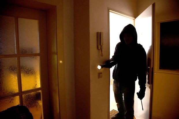 """Испугался собаки и сдался добровольно: """"пыльный преступник"""" держал в страхе весь дом"""
