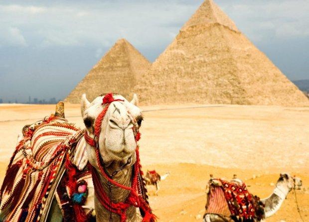 Парочка гарячих туристів порушила спокій фараонів любощами на вершині піраміди: відео 18+