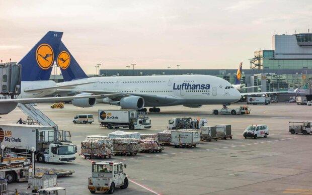 Крупный авиаперевозчик заморозил тысячу важных маршрутов из-за стюардесс: что произошло