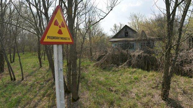 """У Чорнобилі """"оселилися"""" нелегали: """"Думали, не помітять"""""""