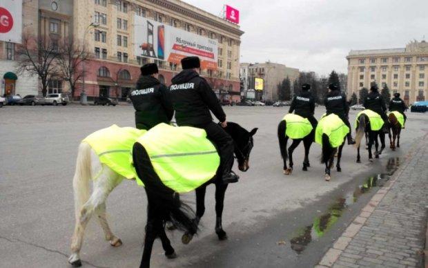 Патрульная лошадь едва не затоптала киевлянку с ребенком