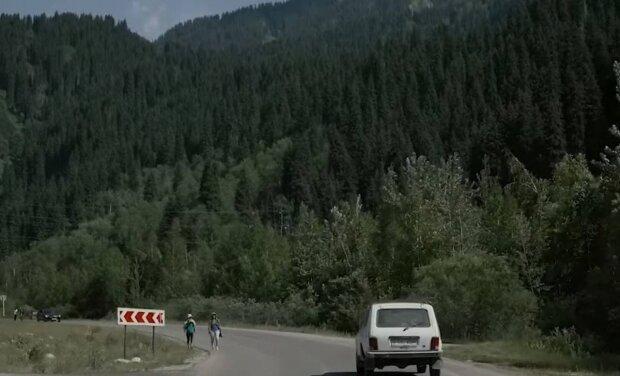 Ліс / скріншот з відео