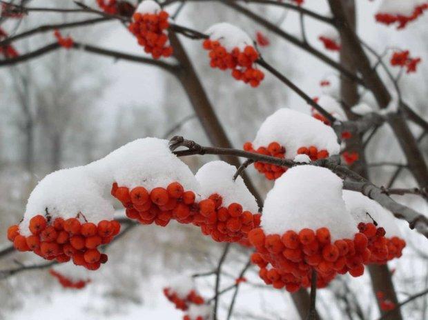 Сьогодні народне свято Антон Перезимник 30 січня: повір'я і прикмети