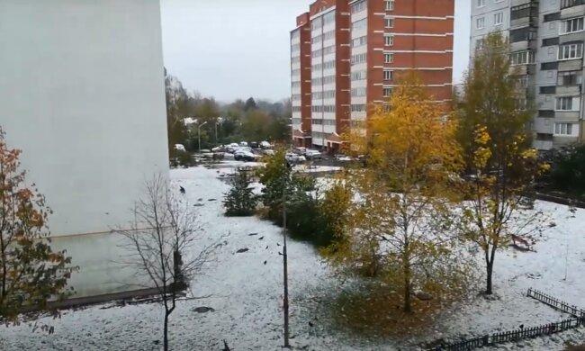 Правительство не сдержало непредсказуемого врага: страну засыпало снегом за месяцы до Нового Года