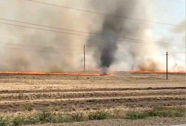 Огненный смерч в Башкирии, скриншот с видео