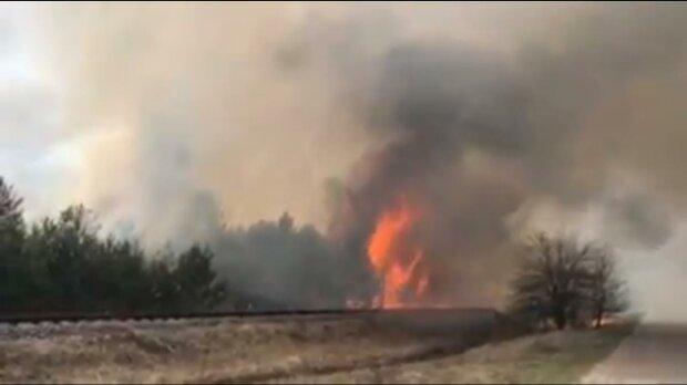 пожар в Чернобыле, скриншот с видео