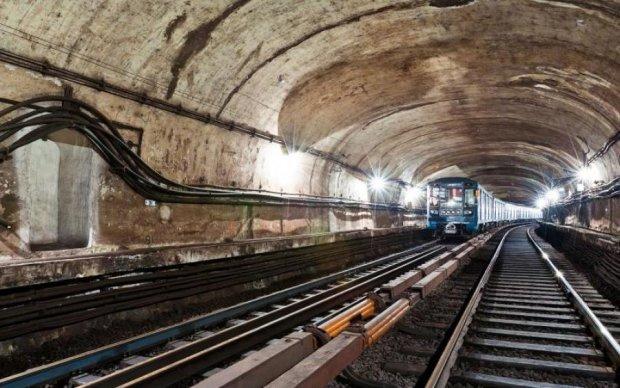 Не похоже ни на что: в украинской подземке нашли крылатого мутанта, фото