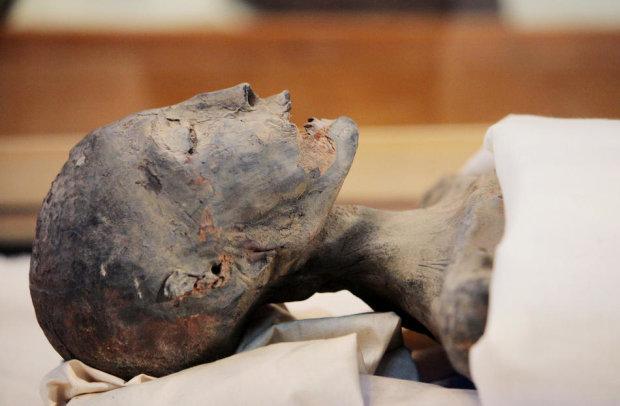 Вченим вдалося розшифрувати геном прадавніх єгиптян: результати шокують