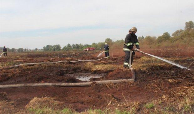 Во Львовской области горят торфяники