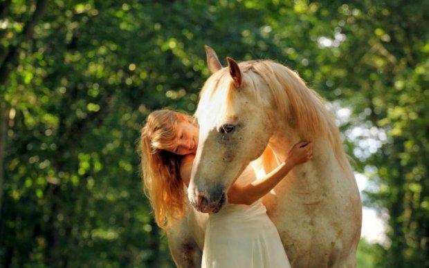 Розкрито походження домашніх коней